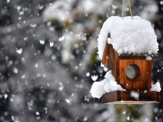 Крупные хлопья: в Симферополе выпал снег