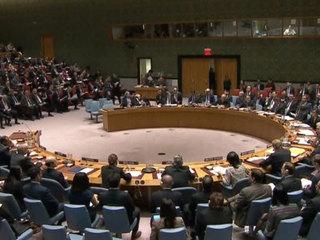 Россию захотели лишить права вето в Совбезе ООН