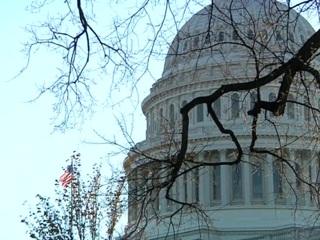 В первый рабочий день Байдена Конгресс может инициировать ему импичмент