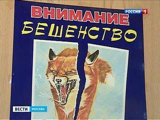 В одном из центральных районов Москвы введен двухмесячный карантин по бешенству
