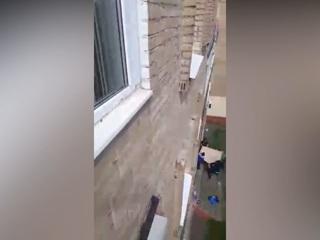 Дворники спасли выпавшую из окна девочку в Подольске
