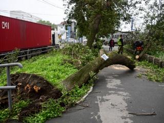 """Супертайфун """"Майсак"""": с таким ураганом Приморье столкнулось впервые за 50 лет"""