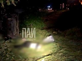 Четыре человека скончались после столкновения с лосем в Псковской области