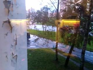 По Санкт-Петербургу ударил штормовой ветер