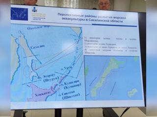 На Сахалине чиновника уволили из-за неправильного цвета островов на карте