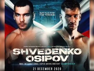 Бокс. Шведенко и Осипов разыграют титул WBC International