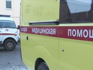 Покусанная собакой юная москвичка погибла, выпав из окна