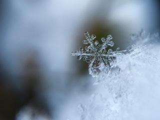 В Москве продолжится похолодание