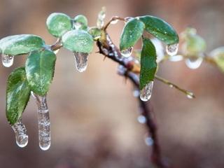 На Севастополь движется ледяной дождь