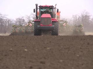 Президент призвал активнее помогать аграриям в развитии садоводства