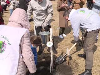 Новости на России 24. В Белгородской области на местах сражений заложили Сад памяти