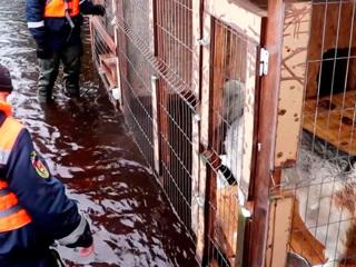 Паводок в России: подтоплены уже 34 региона