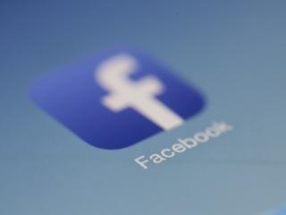 Facebook удалил посты Жапарова о лечении COVID-19 ядовитым растением