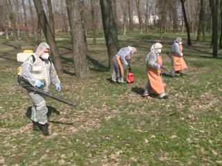 Вести. В Белгороде обработали парки от клещей