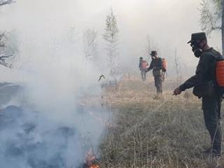 Новости на России 24. 107 лесных пожаров потушено в России за сутки