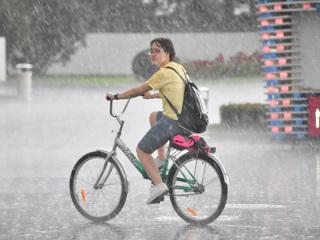 МЧС предупредило о грозе и сильном ветре в Москве и области