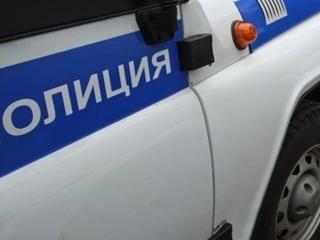 В Тверской области мужчина засмотрелся на сбитого лося и погиб