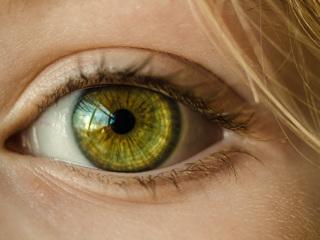 Зрение человека впервые восстановлено с помощью генной терапии