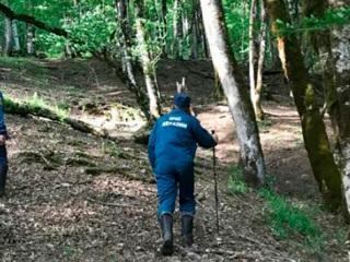 В Абхазии ищут россиянку, упавшую в горную реку на прогулке