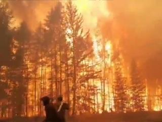 Лесные пожары угрожают 14 российским регионам