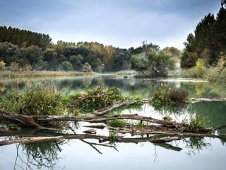 В Орле расследуют гибель подростка на реке Сосна