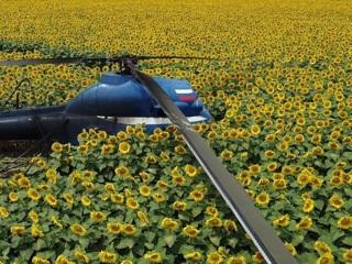 Сбежавшего пилота упавшего в КБР Ми-2 нашли по отпечаткам пальцев