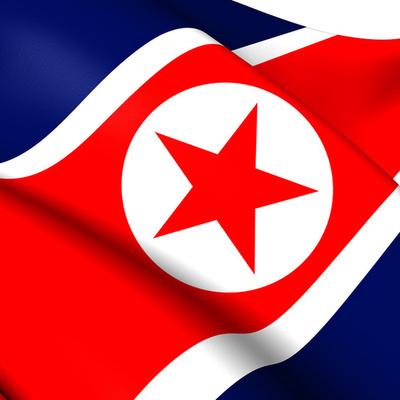 Порядка 3,5 млн жителей Северной Кореи пожелали вступить или вернуться в армию