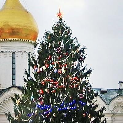 Главную новогоднюю елку России доставили в Кремль