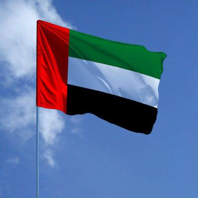 Эмиратский бизнесмен купил номер для своего автомобиля за почти 3 миллиона долларов