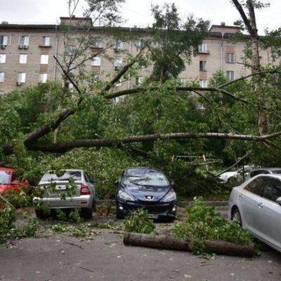 Последствия ночного урагана ликвидируют в Алтайском крае