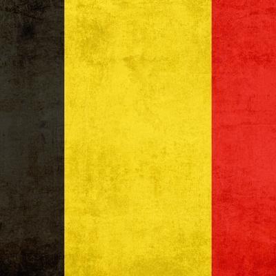Стали известны подробности взрыва в бельгийском Генте
