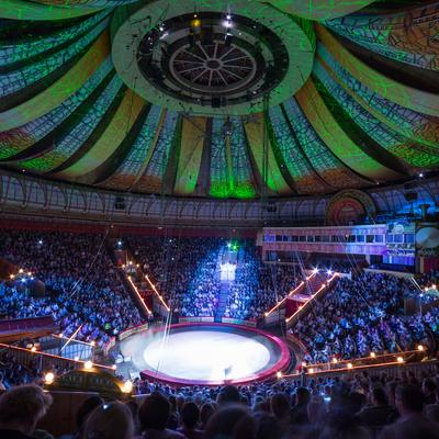 Артист «Цирка Мстислава Запашного» сорвался с высоты