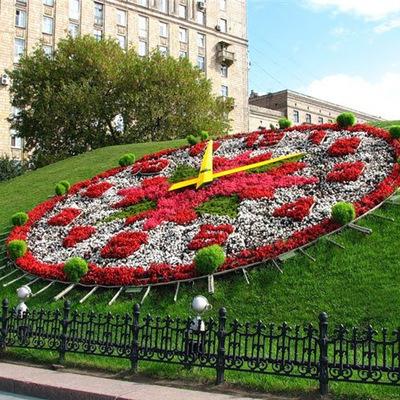 Почти 50 миллионов цветов высадят на улицах Москвы