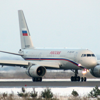 Пассажиры с поврежденного птицами лайнера улетели в Москву резервным бортом
