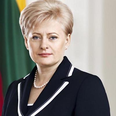 Президент Литвы не смогла вылететь в Латвию