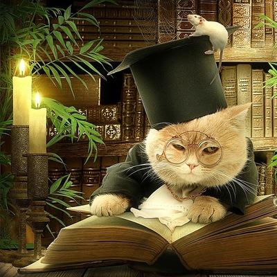 """Кошки-мышки, сказки-книжки"""