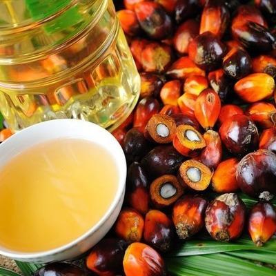Льготы на пальмовое масло будут отменены