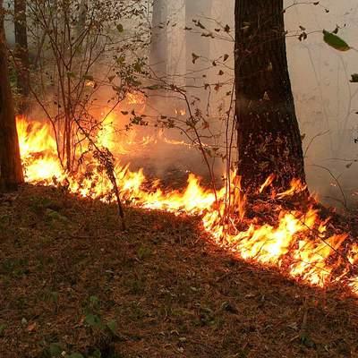 Борьбу с огнем ведут в поселке Батагай в Якутии, где лесной пожар подошел к нефтебазе