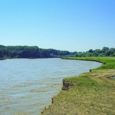 Уровень воды в реках Кубани вернулся в норму