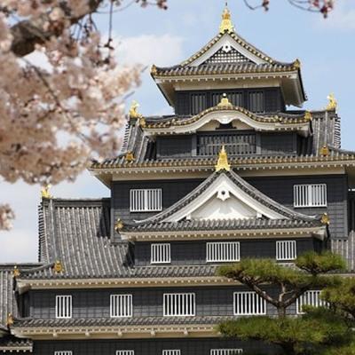 Праздничный фестиваль стартовал в субботу в Токио перед императорским дворцом
