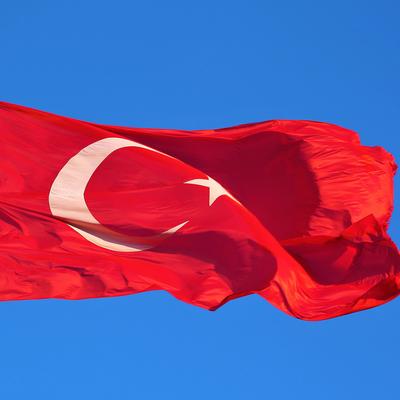 Введенный в Турции полный локдаун будет снят 17 мая