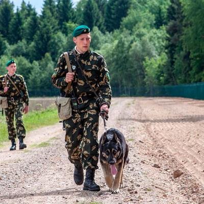 Органы пограничной службы охраняют государственную границу Белоруссии в усиленном режиме