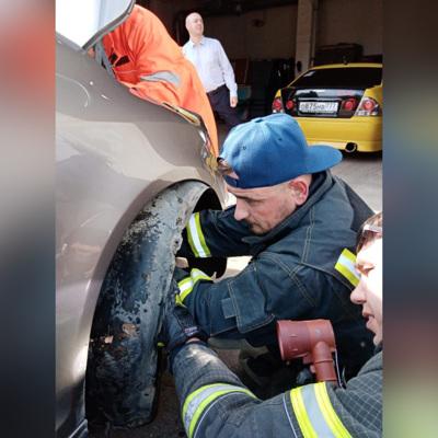 Житель Москвы разобрал машину, чтобы вытащить заползшую в нее гадюку