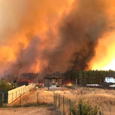 Пожарные ликвидировали последний ландшафтный пожар под Воронежем