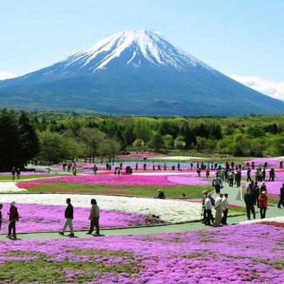 В нацпарках Японии решили организовать импровизированные офисы для фрилансеров