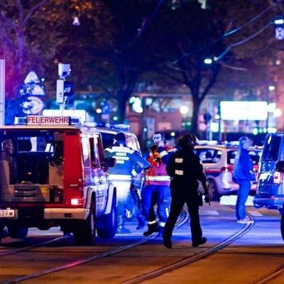 Следствие считает, что террорист в Вене действовал один
