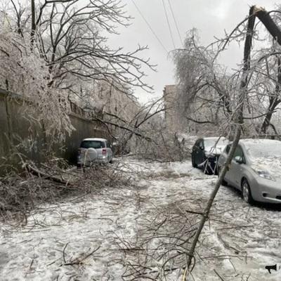 Аварийно-спасательные работы в Приморье продолжатся до 10 декабря