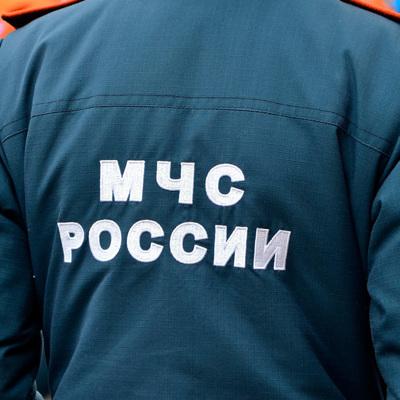 Хлопок газа произошел в павильоне на цветочном рынке в Краснодаре