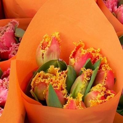 Стоимость цветов в России к 8 марта может вырасти на 35%