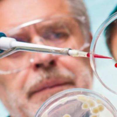В России за сутки выявили 11 749 новых случаев коронавируса